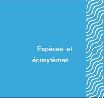 Espèces et écosystèmes
